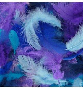Set plumas variadas Azul