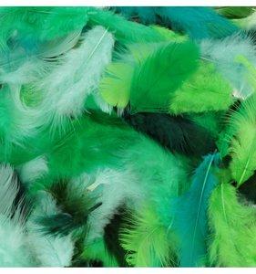 Set plumas variadas Verde
