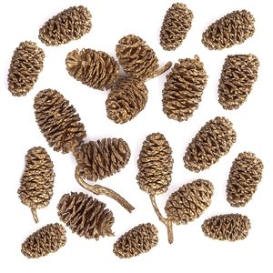 Mini piñas naturales doradas DP Craft Christmas