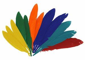 Set de plumas Mix colores 14 cm 60 pcs