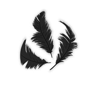 Set de plumón Negro 7,5 cm 14 gr