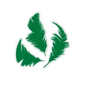 Set de plumón Verde 7,5 cm 14 gr