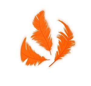 Set de plumón Naranja 7,5 cm 14 gr