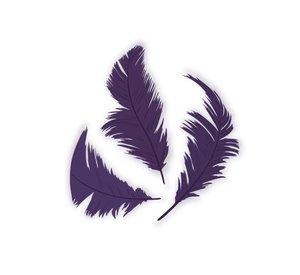 Set de plumón Lila 7,5 cm 14 gr