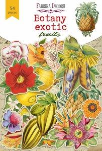 Die Cuts Fabrika Decoru Botany Exotic Fruits