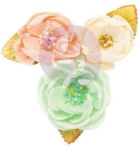 Flores Cotton Candy Santa Baby