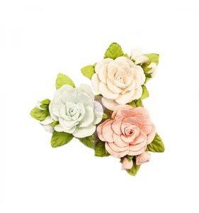 Flores Poetic Rose Sweet Roses