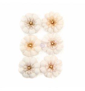 Flores Pretty Pale Pale Petals