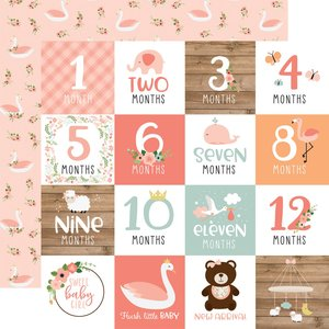 "Papel 12""x12"" Baby Girl Milestone Cards"