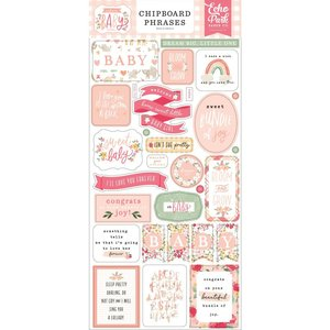 """Chipboard 6x12"""" Echo Park Welcome Baby Girl Phrases"""