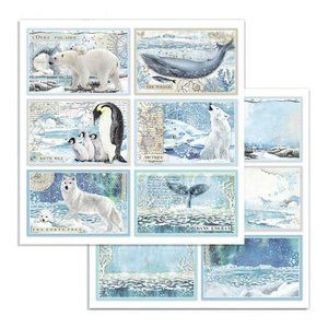 "Papel 12x12"" Stampería Artic Antartic Cards"