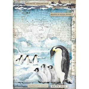 Papel de Arroz A4 Stampería Artic Antartic Penguins