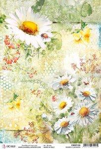 Papel de arroz Ciao Bella A4 Daisies & Ladybugs