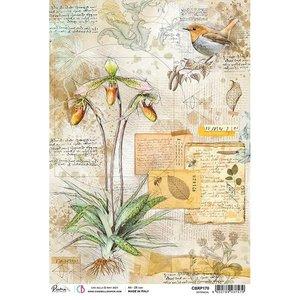 Papel de arroz Ciao Bella A4 Botanical