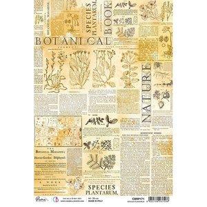 Papel de arroz Ciao Bella A4 Species Plantarum