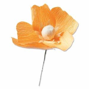 Troqueles Thinlits Sizzix California Poppy