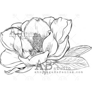 Sellos de caucho AB Studio ID-1096 Magnolia