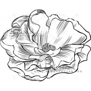 Sellos de caucho AB Studio ID-1094 Wild Rose