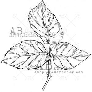 Sellos de caucho AB Studio ID-1069 Small Leaf