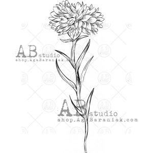 Sellos de caucho AB Studio ID-1066 Cornflower