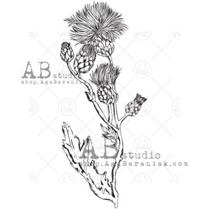 Sellos de caucho AB Studio ID-1057 Wild Thistle