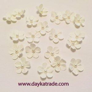 Dayka Set de Flores Crema