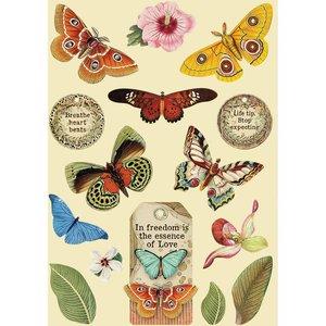 Maderitas coloreadas Stampería Amazonia Mariposas